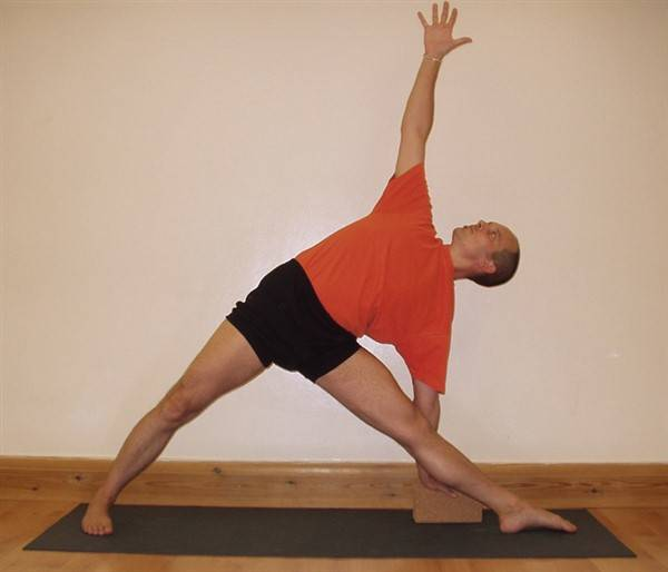 Trikonasana Asana or Triangle Pose