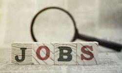 Jobs for the Handicap